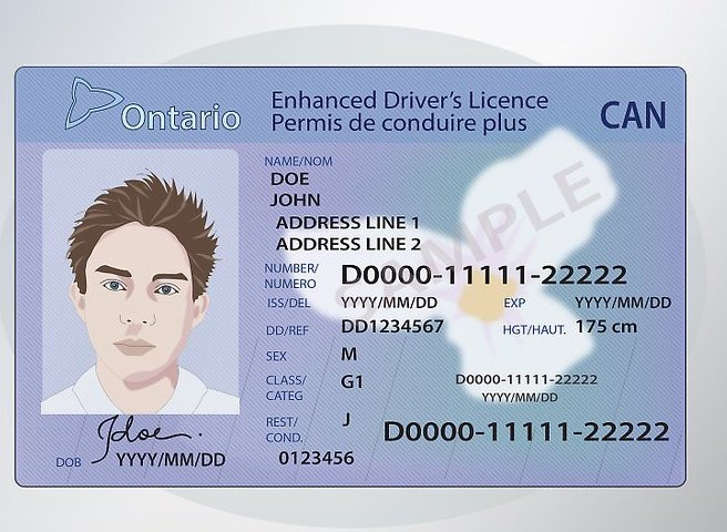 Buy fake drivers licence of Canada online Canadian fake driving license for sale online